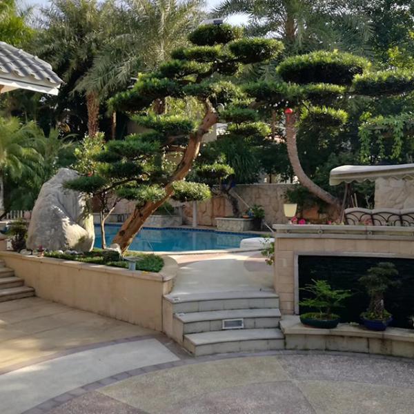 私家花园设计施工技巧有哪些